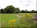 SE4004 : Netherwood Park. by Steve  Fareham