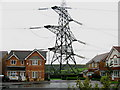 SJ9799 : Pylon in the Garden by Paul Anderson