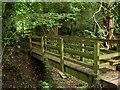 SJ5475 : Footbridge. by David Quinn
