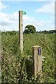 SJ4353 : Wetreins Green by Geoff Evans
