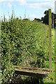 SJ4350 : Cheshire's Shortest Bridge? by Geoff Evans