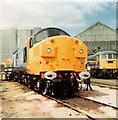 NS6166 : St Rollox Depot Open Day 1981 by David Hamilton