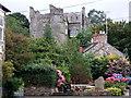 SN0538 : Castell Drefdraeth/Newport castle in summertime by ceridwen