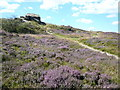 SK3563 : Ashover Rock (Farhill) - Surrounded by Heather by Alan Heardman