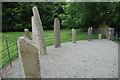 V8790 : Ogham stones by ALAN SOUTHWORTH