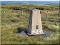 NT3743 : Windlestraw Law trig point by Richard Webb