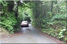 SX2773 : North Darley : Lane to Rilla Mill by Rob Farrow