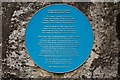 Photo of Sam Houston blue plaque