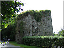 W5654 : Castles of Munster: Poulnalong, Cork by Mike Searle