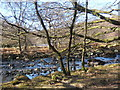 SD2296 : Tarn Beck just before it joins the Duddon by Andrew Hill