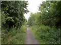 SE3303 : The Trans Pennine Trail. by Steve  Fareham