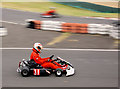 SE4003 : A future World Champion? by Steve  Fareham