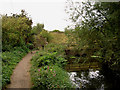 SE3901 : Steps up to road from trail along canal bank. by Steve  Fareham