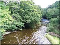 SJ1006 : View downstream, Afon Banwy by Maigheach-gheal