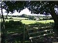 SU6984 : Horse jump at Highmoor Farm by Graham Horn