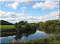 SO5538 : River Wye - Upstream from Hampton Bishop by Pauline E