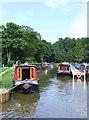 SJ8457 : Sherborne Wharf Marina, Macclesfield Canal, Cheshire by Roger  Kidd