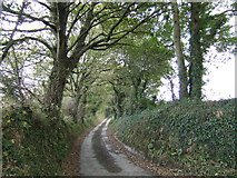 SW8558 : Lane to Trevean by Jonathan Billinger