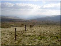 SD8198 : The fence marks the county boundary by Ian Greig