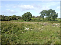M2330 : Countryside west of Galway city by Jonathan Billinger