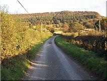 SO3870 : Lane Near Letton by Geoff Pick