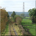 SJ9453 : Disused Railway Line, near Denford, Staffordshire by Roger  Kidd