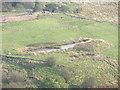 SD7319 : Pond, Broadhead Valley by liz dawson