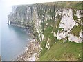 TA2073 : Chalk cliffs at Bempton by Miss Steel