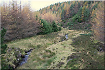 "NJ1145 : Track north of the ""baby"" Lossie by Loch an Salich by Des Colhoun"