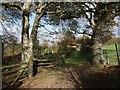 SX3392 : Footpath past Mount Pleasant by Derek Harper