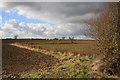 TL2975 : Field boundaries near RAF Wyton by Bob Jones