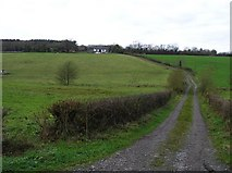 H7143 : Mullaliss Townland by Kenneth  Allen