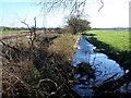 SJ9838 : River Blithe Near Lower Newton Farm by Geoff Pick