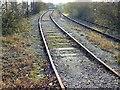ST5279 : Disused railway line, King's Weston Lane, Avonmouth by Brian Robert Marshall