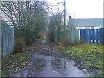 NS8255 : Victoria street Newmains by dan m