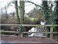 SO7624 : Road bridge over Ell Brook by Pauline E