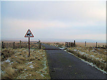 NT8402 : Definitely not a Cattle Grid by No Body