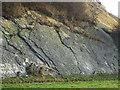 SO9392 : Silurian Limestone Slabs, Wren's Nest, Dudley by Roger  Kidd
