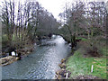 SO3958 : River Arrow at Pembridge by Jonathan Billinger