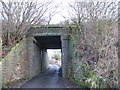 SJ8151 : Bridge under disused railway, Diglake by Stephen Craven