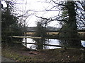 SP3081 : Pond by Staircase Lane by E Gammie