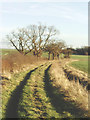 TL1564 : Huntingdonshire countryside north of Hail Weston by David Kemp