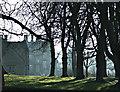 ST8169 : Private Hotel, Ditteridge : Week 6