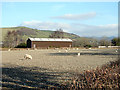 SN6479 : Vale of Rheidol Railway rolling stock storage shed by John Lucas