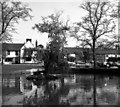 TQ3551 : Small pond in the centre of Godstone by Dr Neil Clifton