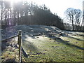 NY8885 : Bell Knowe round cairn : Week 7