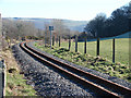 SN6479 : Vale of Rheidol Railway track by John Lucas