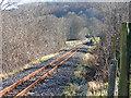 SN6678 : Vale of Rheidol Railway by John Lucas