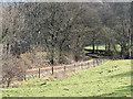 SN6678 : The Vale of Rheidol Railway by John Lucas