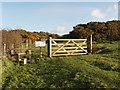SX1990 : Field gate into Warbstow Bury by David Hawgood